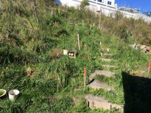 Rough steps